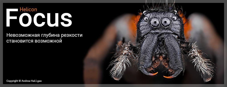 Программа для фотографов - Helicon Focus. Пример обработки стека